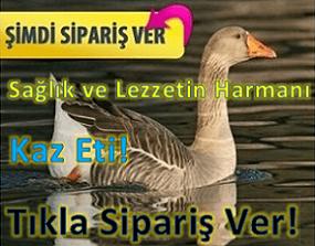 satilik-kaz-reklam